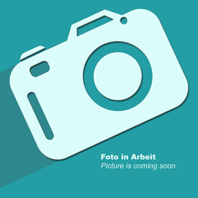 Frontansicht einer einzelnen Hex-Hantel Gummi mit Gewichtsangabe