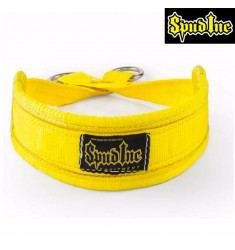 Belt Squat Belt from SPUD Inc. - der Hüftgürtel für Ihr Workout