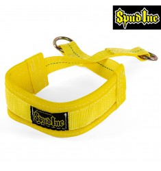 Belt Squat Belt Small from SPUD Inc.